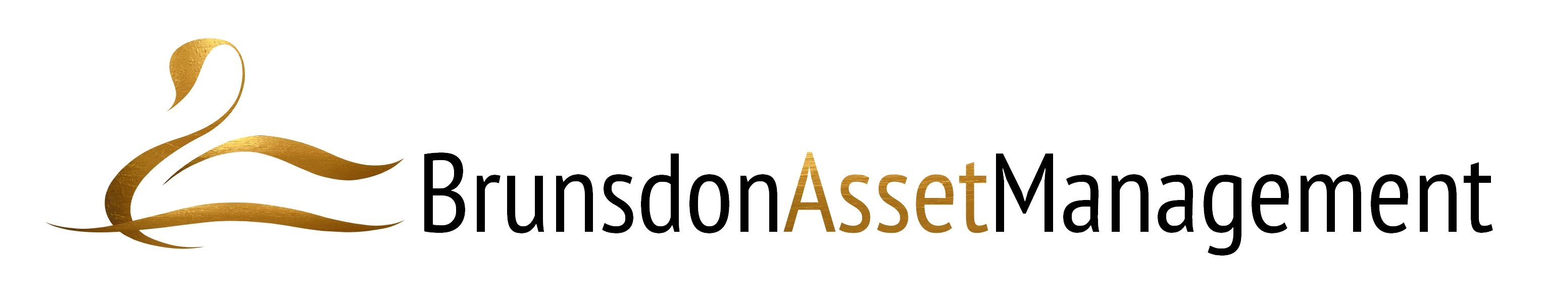 Brunsdon Asset Management